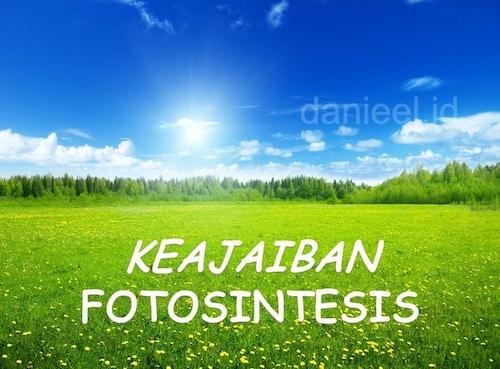 Keajaiban Fotosintesis, Energi Kehidupan Pada Sehelai Daun